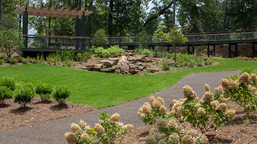 Green garden with rocky water feature and walking path
